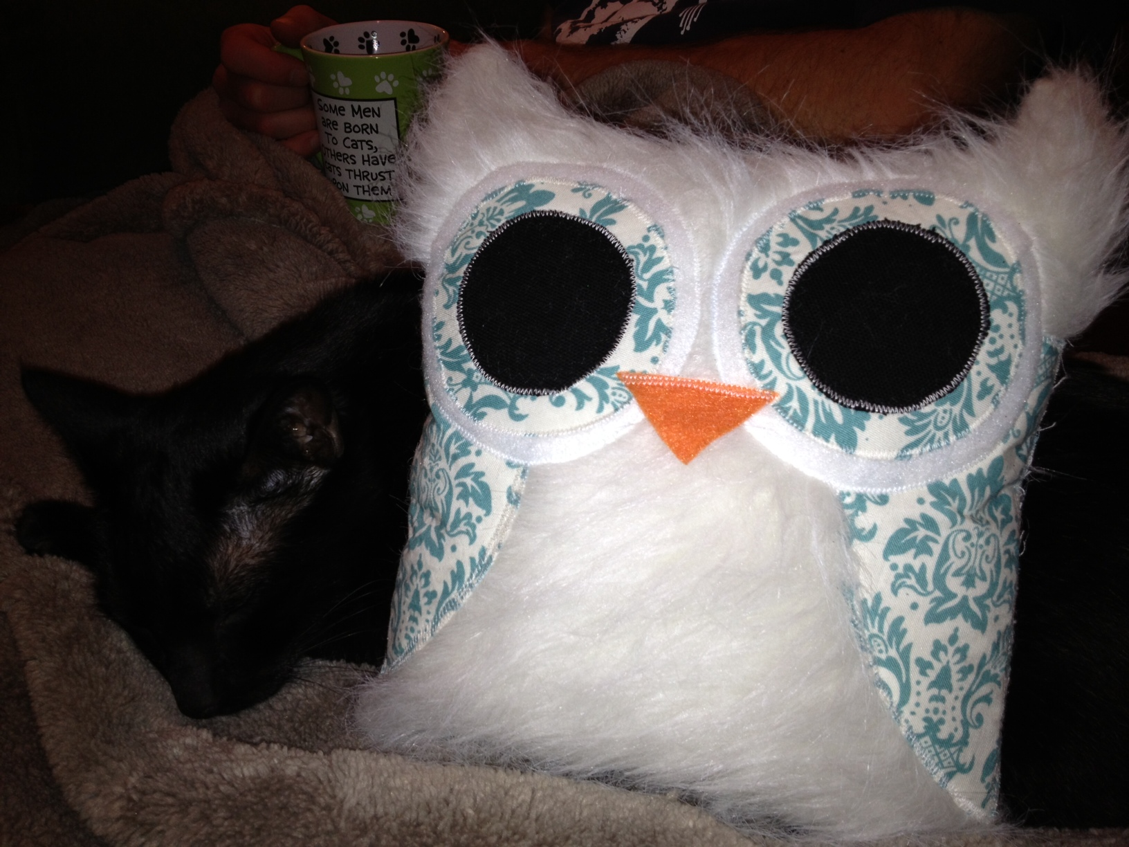 Sparky and Owl